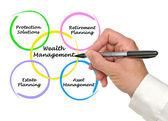 Wealth management — Stock Photo