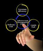 Software Asset Management — Stock Photo