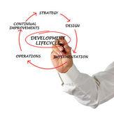 Presentazione del ciclo di sviluppo — Foto Stock