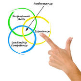 Diagram of performance — Stock Photo