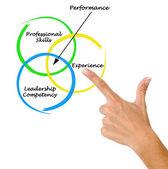 Diagramma delle prestazioni — Foto Stock