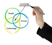 Knowledge Management — Stock Photo
