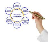 Diagramma di assicurazione di affari — Foto Stock