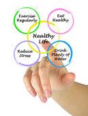 Schemat zdrowego stylu życia — Zdjęcie stockowe