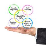 Healthy life — Stock Photo