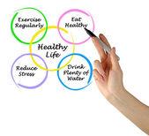 健康生活的关系图 — 图库照片