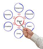 Diagram of trust — Stock Photo