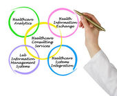 Healthcare Consulting Services — Stock Photo