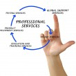 Diagram of professional services — Stock Photo #45776057