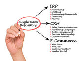 Single Data Repository — Stock Photo