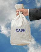 Tas met geld — Stockfoto