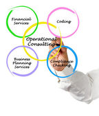 Operational Consulting — Stock Photo