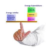 Balance between Energy intake and Energy expenditure — Stock Photo