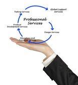 Diagram of professional services — Stock Photo