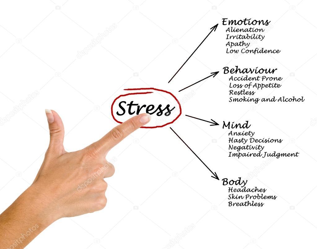 diagramme des cons quences du stress photographie vaeenma 46119811. Black Bedroom Furniture Sets. Home Design Ideas