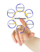 Diagram of wellness — Stockfoto