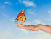 Butterfly on finger — Stock Photo