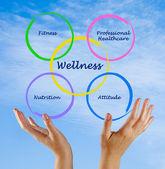 Diagram of wellness — Stock Photo