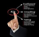 RIA diagram — Stock Photo
