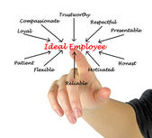 Ideal Employee — Foto de Stock