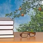 Eyeglasses and books — Stock Photo #9660630