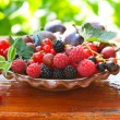 Different berries — Stock Photo #12016429