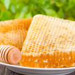 Honeycombs — Stock Photo #12016439
