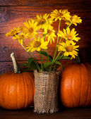 Still life with yellow flowers and pumpkins — Stock Photo