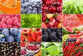 Diversos frutos, bagas, ervas e legumes — Foto Stock