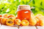 Marillenmarmelade mit frischen Früchten — Stockfoto