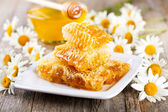 Honeycombs with daisy flowers — Stock Photo