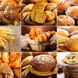 Collage of fresh bread — Stock Photo #29355627