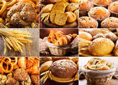 Collage of fresh bread — Stock Photo