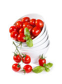 樱桃西红柿与绿色蓬蒿 — 图库照片