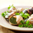 Plate of escargots — Stock Photo