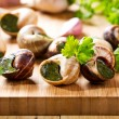 Escargots with parsley — Stock Photo