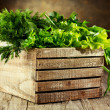 Green herbs — Stock Photo #38277267