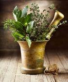 Various herbs in mortar — Stock Photo