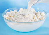 Milk pouring into bowl with cottage cheese — Stock Photo