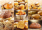 Various fresh bread — Stock Photo