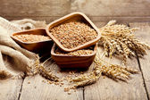 Bowl of wheat grains — Stock Photo