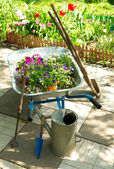 Wheelbarrow with  flowers and garden tools — Foto Stock