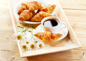 Coffee and croissants with daisy flowers — Stock Photo
