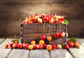 Still life with fresh cherries — Stock Photo
