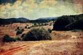 Vintage pole panoramiczny pejzaż — Zdjęcie stockowe