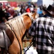 Cowboy and horse — Stock Photo