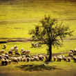 Stock Photo: Pastoral vintage landscape