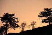 Paesaggio astratto di crepuscolo — Foto Stock