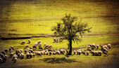 Pastoral vintage landscape — Stock Photo