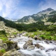 Stock Photo: Pirin mountain